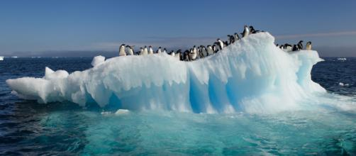 Ola de Calor en los Países Fríos del Polo Norte