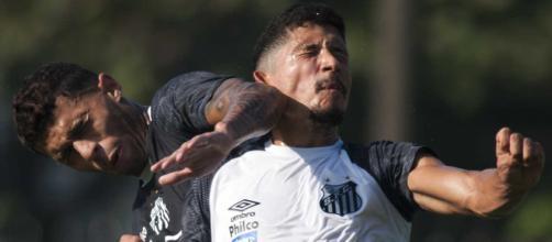 Contrato de Fernando Medeiros vence no final deste ano
