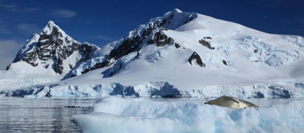 Iceberg in Paradise Harbour, Antarctica (Image courtesy – Liam Quinn, Wikimedia Commons)
