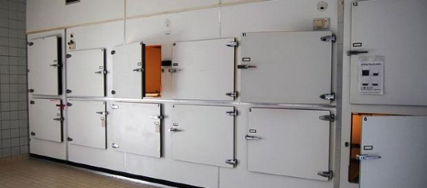 South Africa: 'Dead woman' found alive in Mortuary fridge - image credit - P.J.L Laurens | Wikimedia