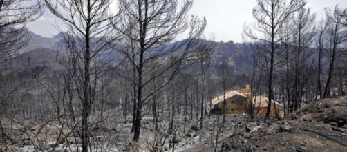 Logran estabilizar el incendio de 3.000 hectáreas en Valencia