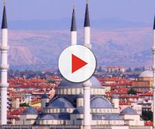 Turquía no abandonara a sus compañeros