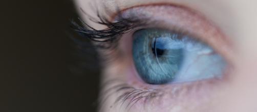 https://pixabay.com/es/ojo-azul-las-pesta%C3%B1as-visi%C3%B3n-691269/ Free-Photos