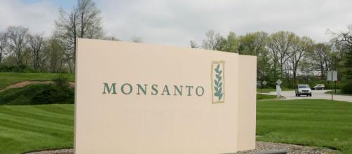 La Compañía Monsanto pagará 289 millones de dólares a un jardinero por los efectos cancerígenos de uno de sus herbicidas