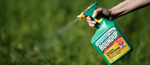 Herbicida de Monsanto considerado cancerígeno