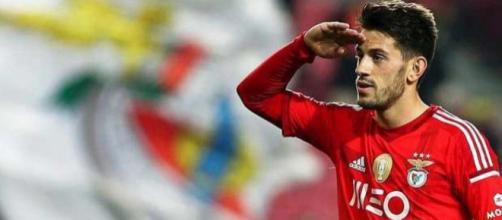 Pizzi est l'une des pistes prioritaires de l'OM durant ce mercato, mais Benfica réclamerait au moins 35 millions d'euros.