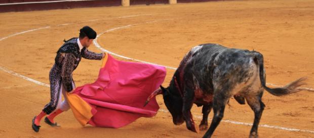 El torero Roca Rey se declara públicamente a Victoria Federica