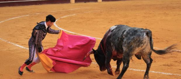 Juan Carlos en los toros en San Sebastián
