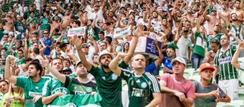 Palmeiras busca mais uma vitória no Brasileirão