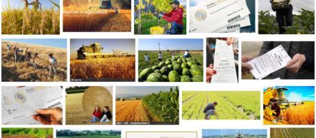 voucher agricoltura come funzionano e novità