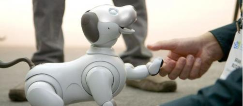 Photo of robot dog, Aibo. - [The Verge / YouTube screencap]