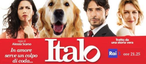 Stasera in TV: Italo, il film tratto sulla storia vera di un randagio che ha conquistato la Sicilia