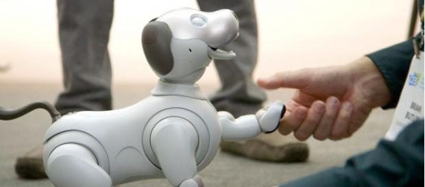 Photo of robot dog, Aibo. - [The Verge / YouTube screencap]