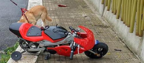 Martina Franca, bimbo di 9 anni in minimoto ha un incidente e muore