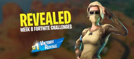 'Fortnite Battle Royale' Season 5, Week 8 challenges have been revealed. - [Original image created by Asmir Pekmic]