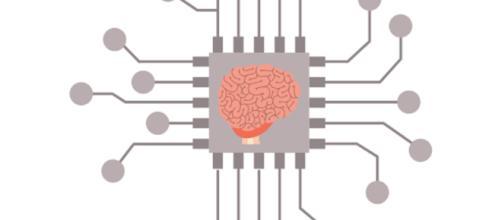La scoperta di un nuovo tipo di neurone