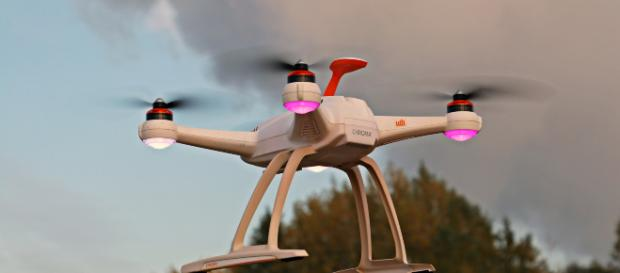 Drones con tecnología española sembrarán en un día 100.00 árboles