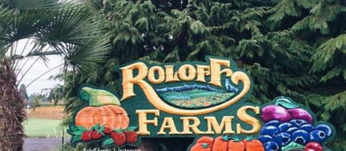 Little People, Big World Roloff Farms Pumpkin Season runs 5 to 28 October - Imnage credit - Roloff Farms | Instagram