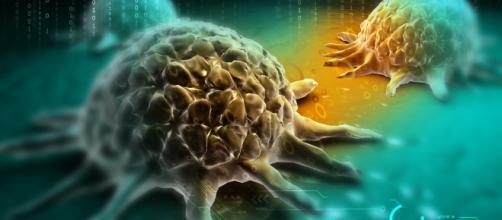 Cancer Prevention — Vitamn B17, Nutrition, Exercise & Stress - dreamcatcherreality.com