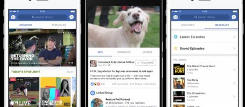 Facebook Watch arriva in Italia! - everyeye.it