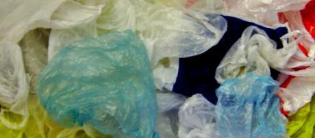 Chile bans the commercial use of plastic bags. [Image Trosmisiek/Wikimedia]