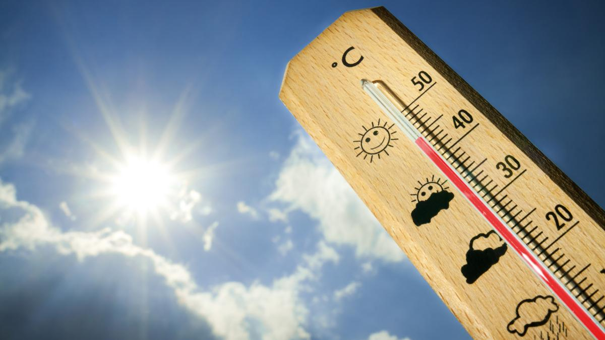 Casa Troppo Calda Rimedi i rimedi naturali più efficaci contro il caldo torrido di
