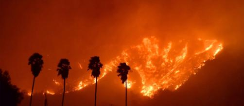 EE.UU./ Trump ha declarado el estado de desastre en California por incendios