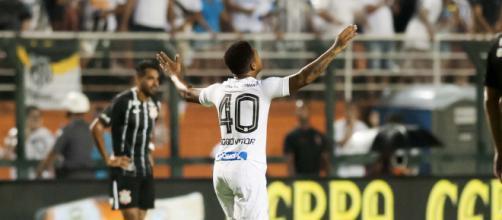 Jogador celebra seu gol anotado contra o Corinthians