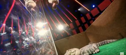 'America's Got Talent' escape artist, Lord Nil, dangled above alligators at Simon Cowell's request. - [America's Got Talent / YouTube screencap]