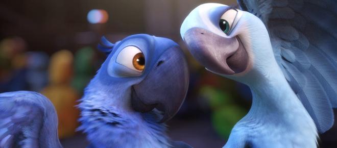 Il pappagallo blu Ara di Spix non esiste più nel suo habitat naturale
