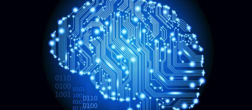 O intelecto humano é uma das grandes diferenciações do reino animal.