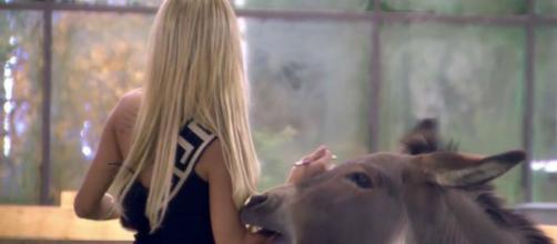 Oriana, asustada por un burro en la casa de Guadalix