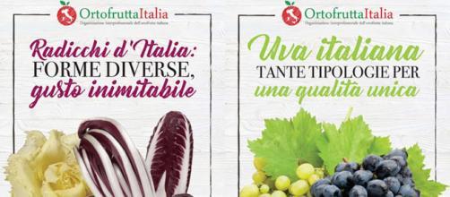 Poster istituzionali di Ortofrutta Italia e Mipaaft sulla campagna di sensibilizzazione
