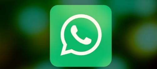 WhatsApp, in arrivo la possibilità di utilizzarlo anche sul Nokia 8110