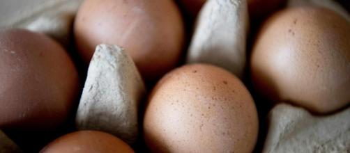 Uova fresche ritirate per salmonella