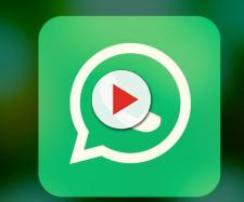 WhatsApp: prossimamente potrebbe essere lanciata la modalità notturna.