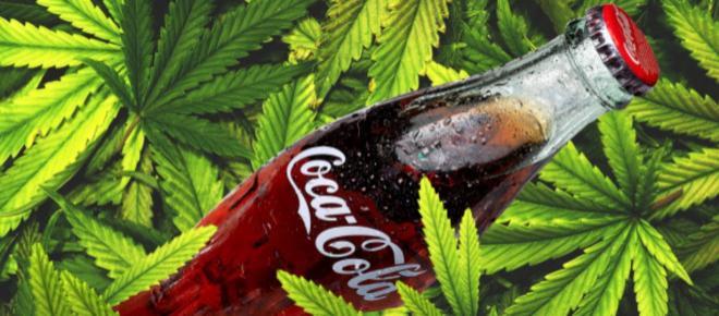 Coca Cola e cannabidiolo: allo studio un soft drink del benessere