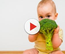 Dieta vegana e vegetariana bambini