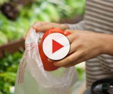 Sacchetti biodegradabili ci costano 90 euro l'anno