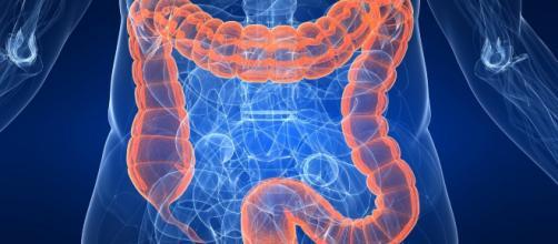 Come pulire l'intestino - YouTube - youtube.com