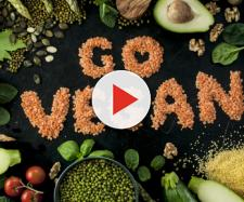 Berkeley, iniziativa per l'ambiente: con i 'Green Mondays' si diventa vegani per legge
