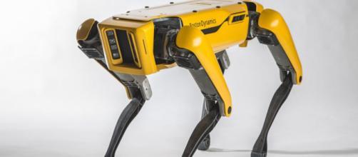 Stati Uniti: presentata la pelle robotica - innaturale.com