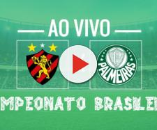 Brasileirão: Sport x Palmeiras ao vivo