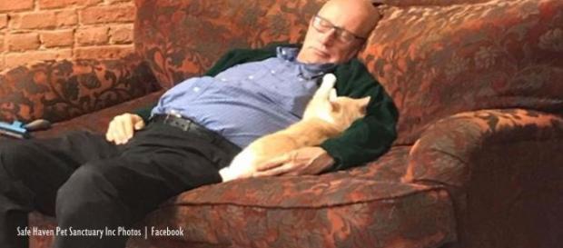 Viral photos of volunteer at Safe Haven Pet Sanctuary Inc go viral, raise funds Image credits - Safe Haven Pet Sanctuary Inc Photos | Facebook