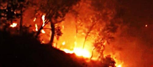 Devastante incendio sul monte Serra (PI) probabilmente di origine dolosa, paesi evacuati.