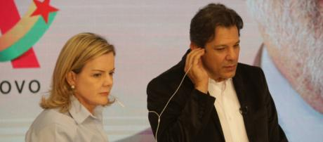 Petistas Gleisi Hoffmann e Fernando Haddad