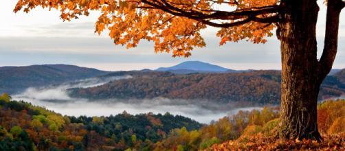 5 Parchi Nazionali dove ammirare il foliage - (foto lonelyplanet.com)