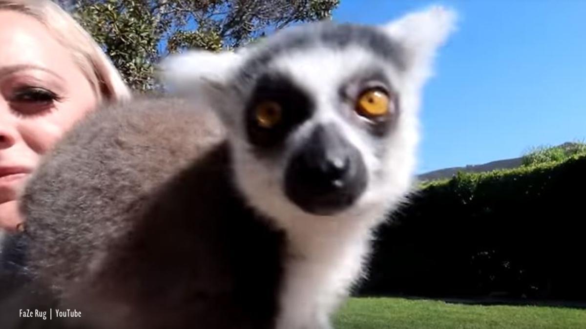 YouTuber FaZe Rug's cutest animal