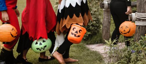 Very soon, trick or treaters will start collecting their favorite candy from homes in the US! - [Image via Pexels free image use]