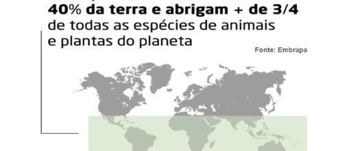 Região que possuem ecossistemas tropicais